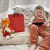 Ethan the Fox soft Cuddly Toy